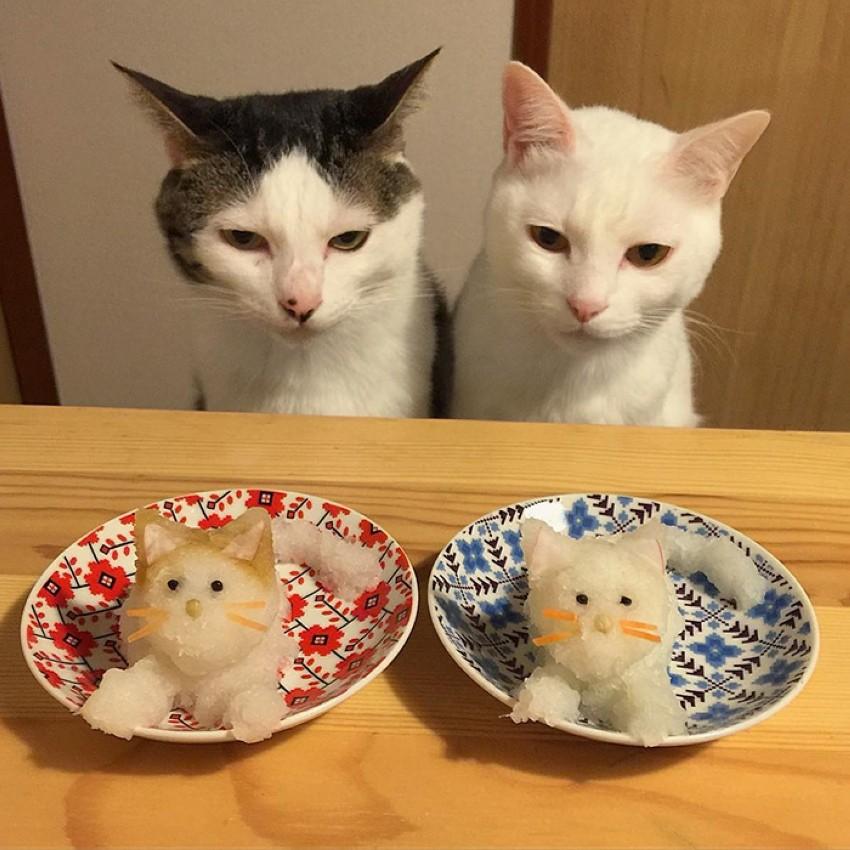 Мы не будем это есть