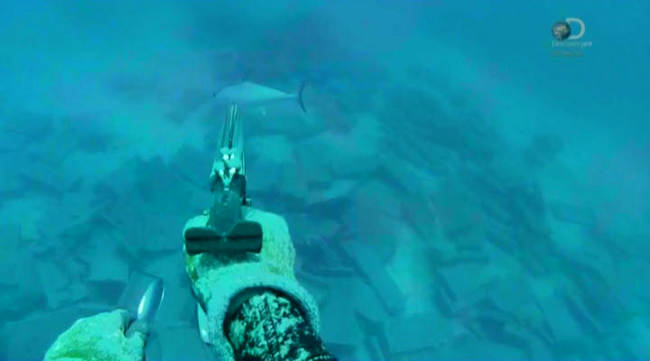 Discovery. Выжить после селфи [01-05 серии] | HDTVRip