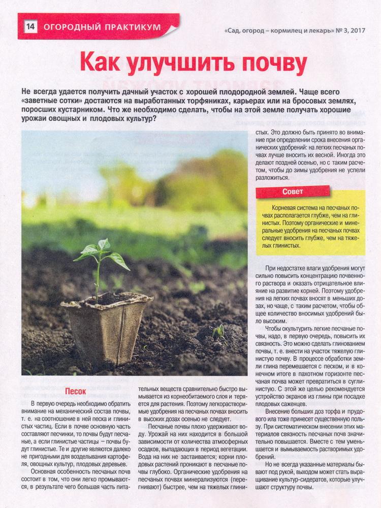 Особенности выращивания на песчаной почве 73