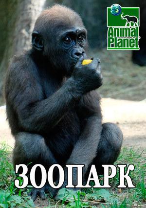 Animal Planet. Зоопарк / The Bronx Zoo [01-08 из 08] (2016) HDTVRip от HitWay | P1