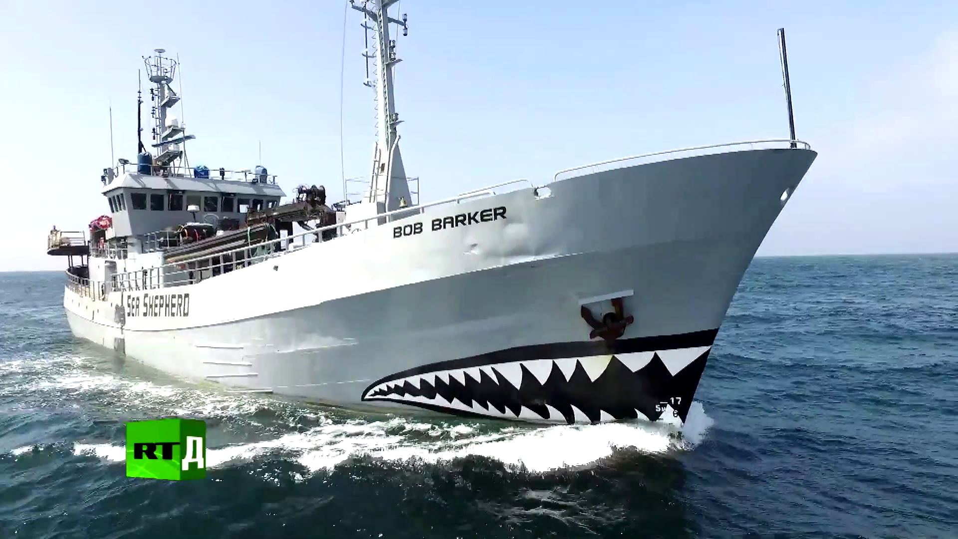 Морской дозор: защита китов с помощью оружия (2017/WEBRip) 1080p, P