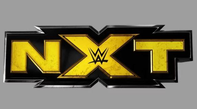 Еще одно увольнение в NXT