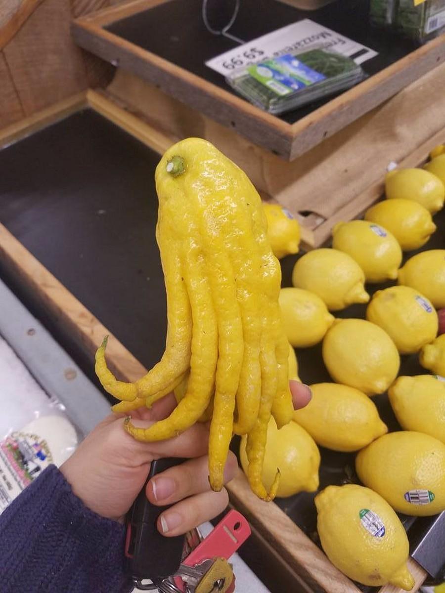 Очень странный лимон