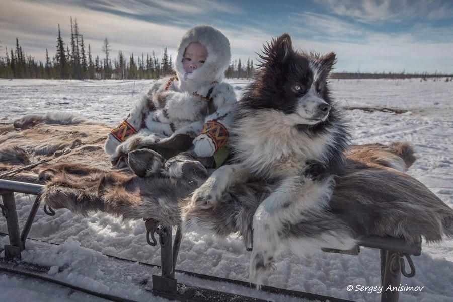 На крайнем севере