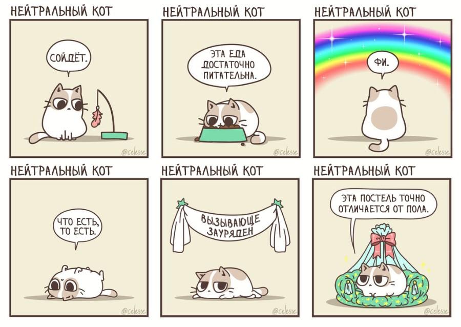 Нейтральный кот