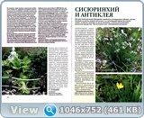 http://i1.imageban.ru/out/2017/12/30/48c26ce685e635cf519226fa0cf1c327.jpg