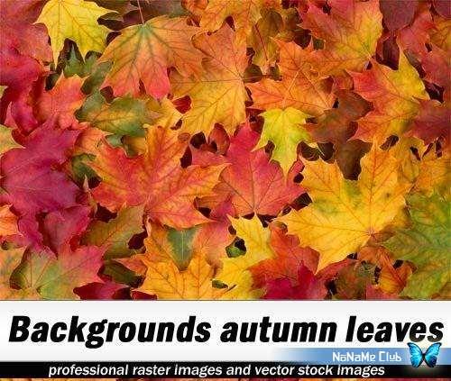 Растровый клипарт - Shutterstock - Backgrounds autumn leaves [JPG]