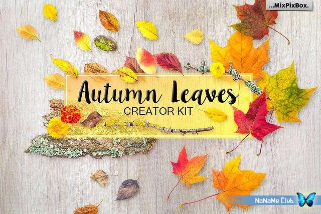 Растровый клипарт - Creative Market - Autumn Leaves - Creator Kit - 1977039 [JPG, PNG, PSD]