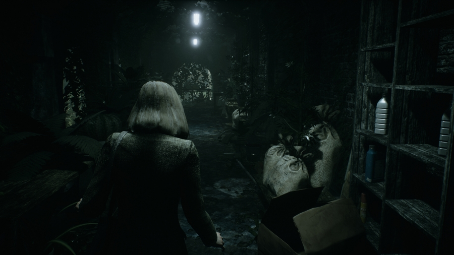 Remothered: Tormented Fathers (2018) PC