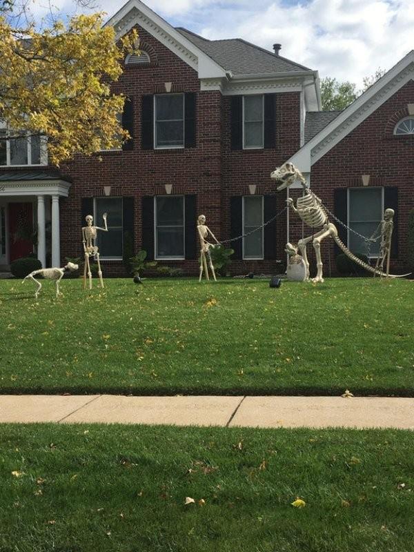 Охота на динозавров