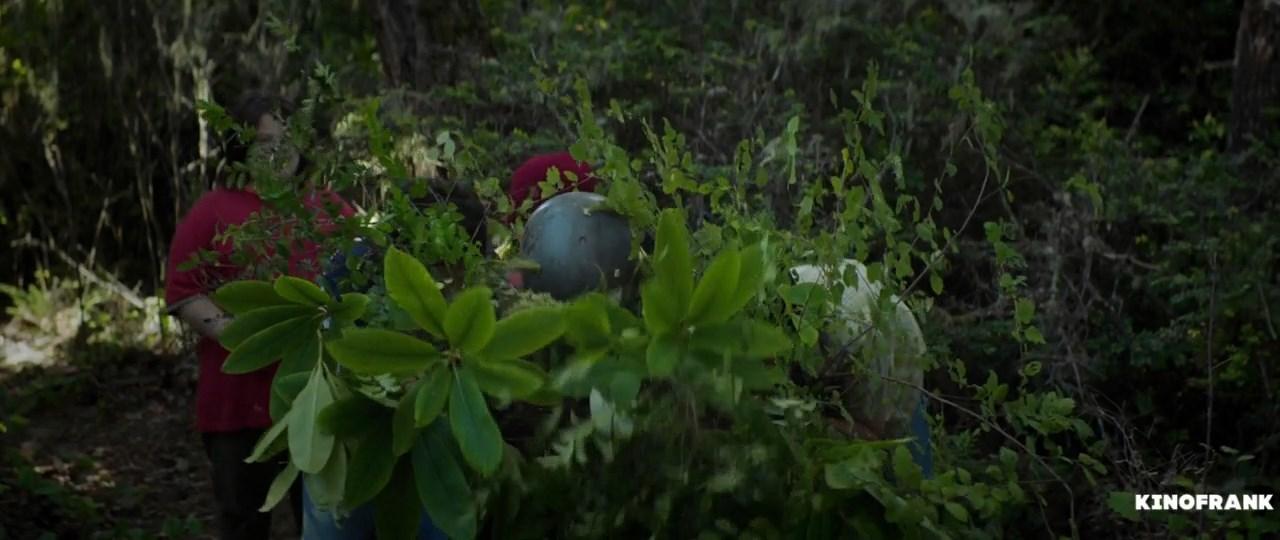 Хранитель леса / The Watchman's Canoe (2017/WEB-DLRip) 720p, P