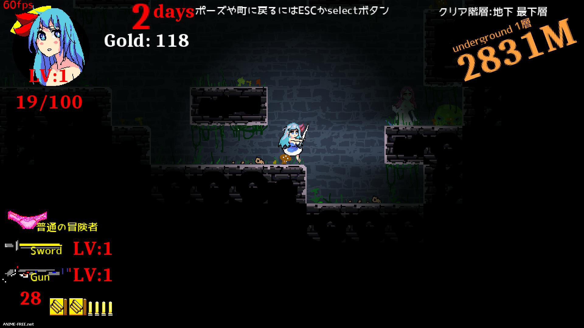 Abyss Crawlers [2017] [Cen] [Action, 2D, Dot/Pixel] [JAP] H-Game