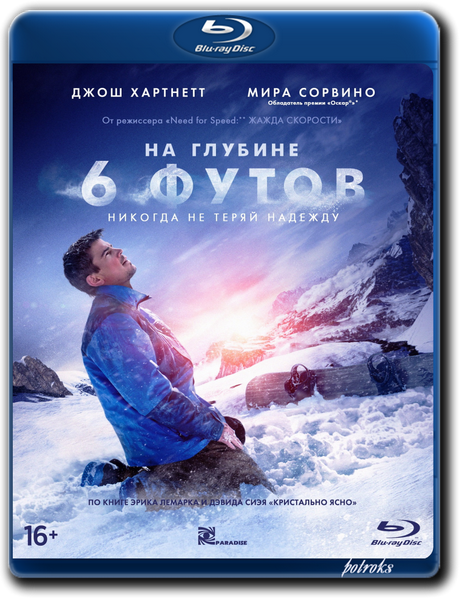 На глубине 6 футов / 6 Below: Miracle on the Mountain (2017) BDRip-AVC от HELLYWOOD | GER Transfer | Лицензия