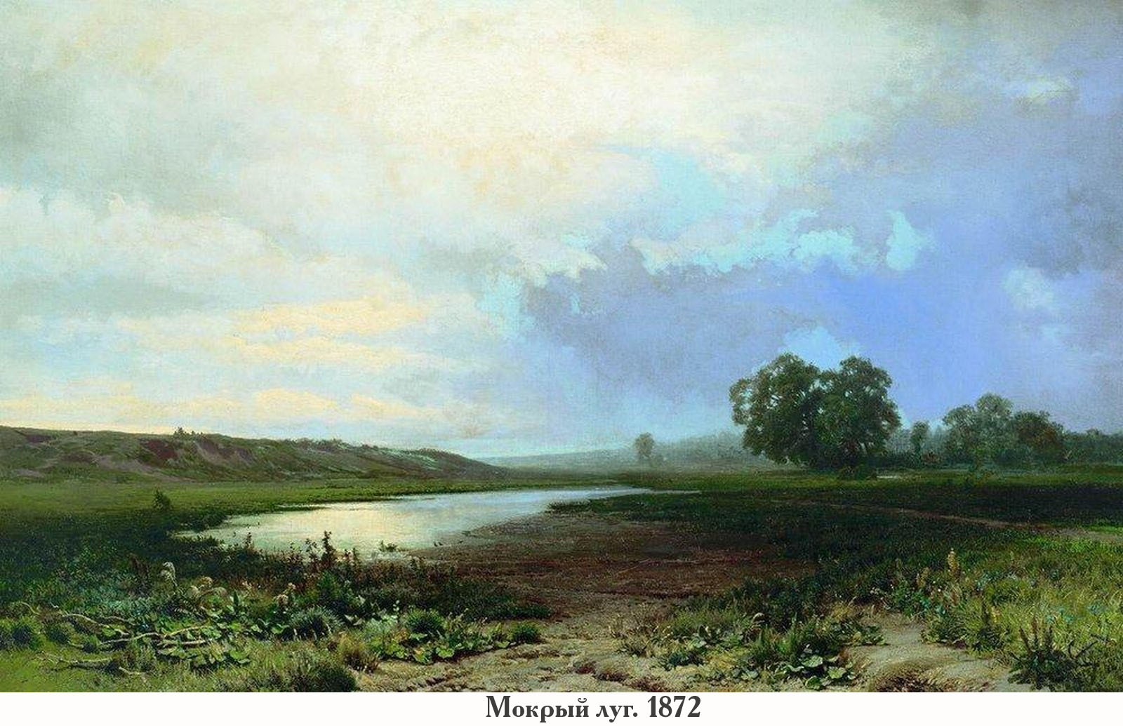 Мокрый луг. 1872.jpg