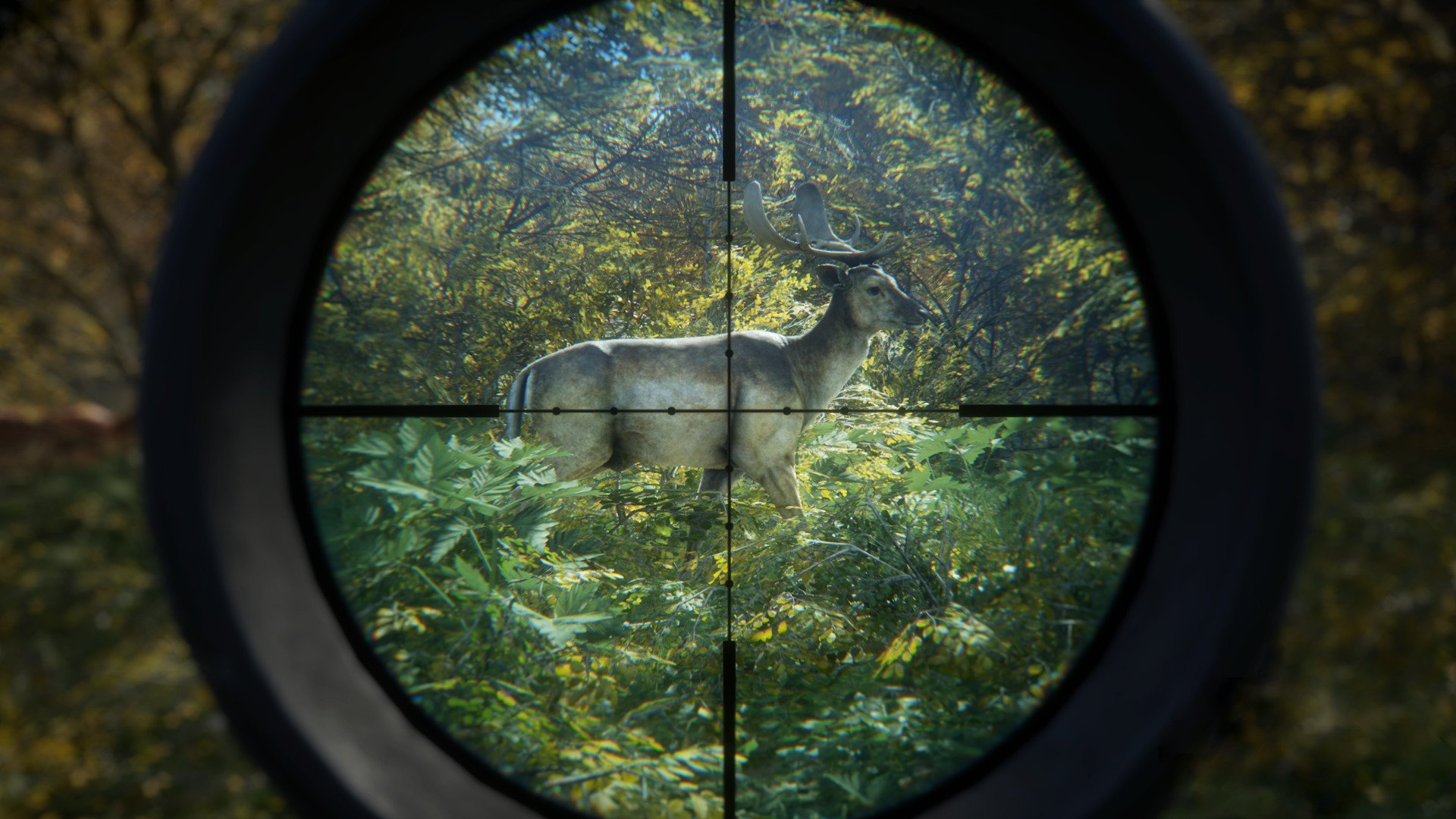 TheHunter: Call of the Wild [v 1.19 + DLCs] (2017) PC