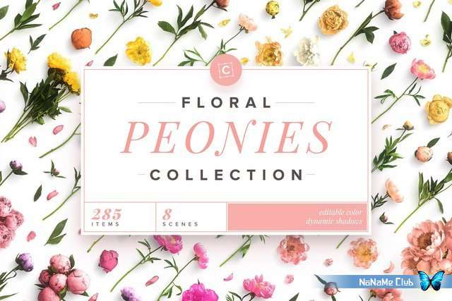 Растровый клипарт - Creative Market - Floral Peonies Collection - 2303528 [JPG, PNG, PSB]