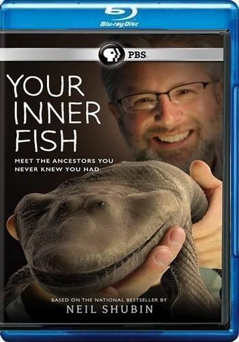 Внутренняя рыба / Your Inner Fish (2014) BDRemux [H.264/1080i] (Серии 3 из 3)