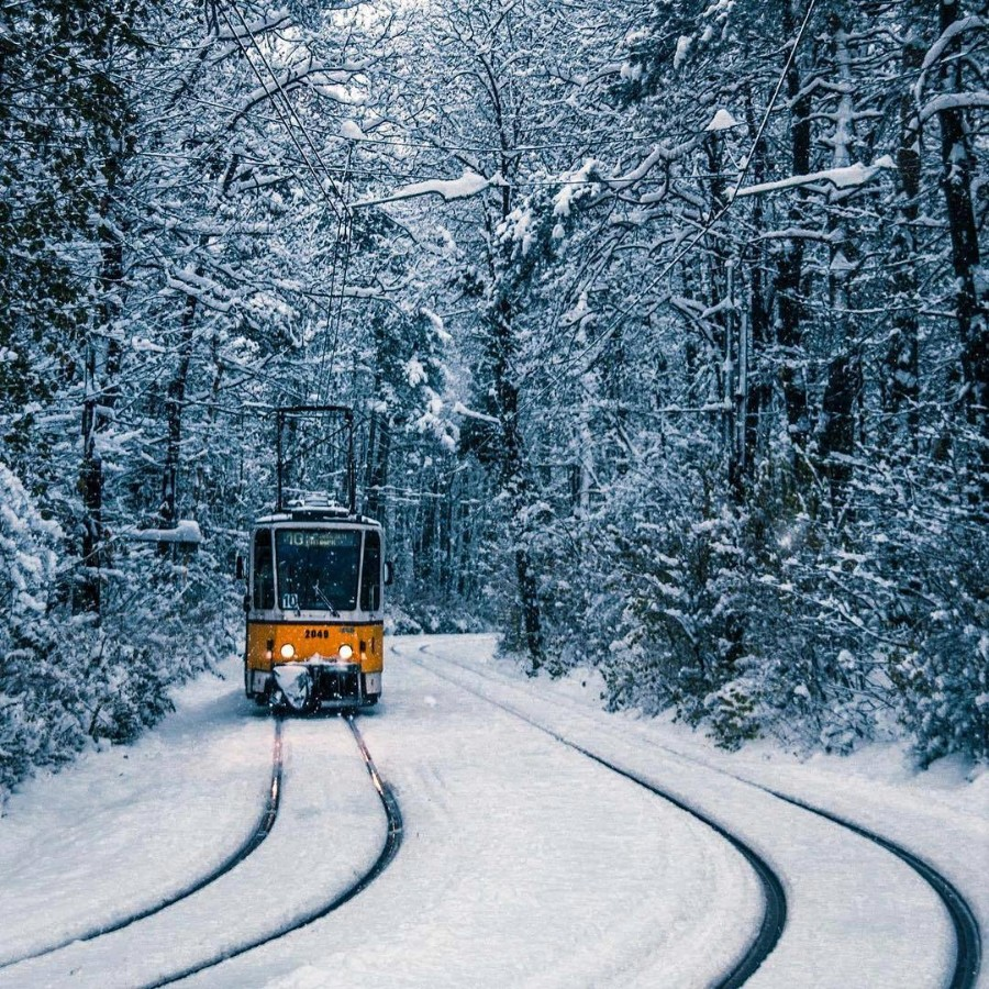 Линия трамвая