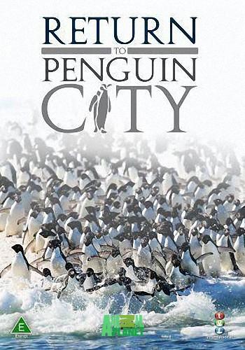 Animal Planet. Возвращение в город пингвинов / Return to Penguin City (2007) HDTV [H.264/1080i-LQ]