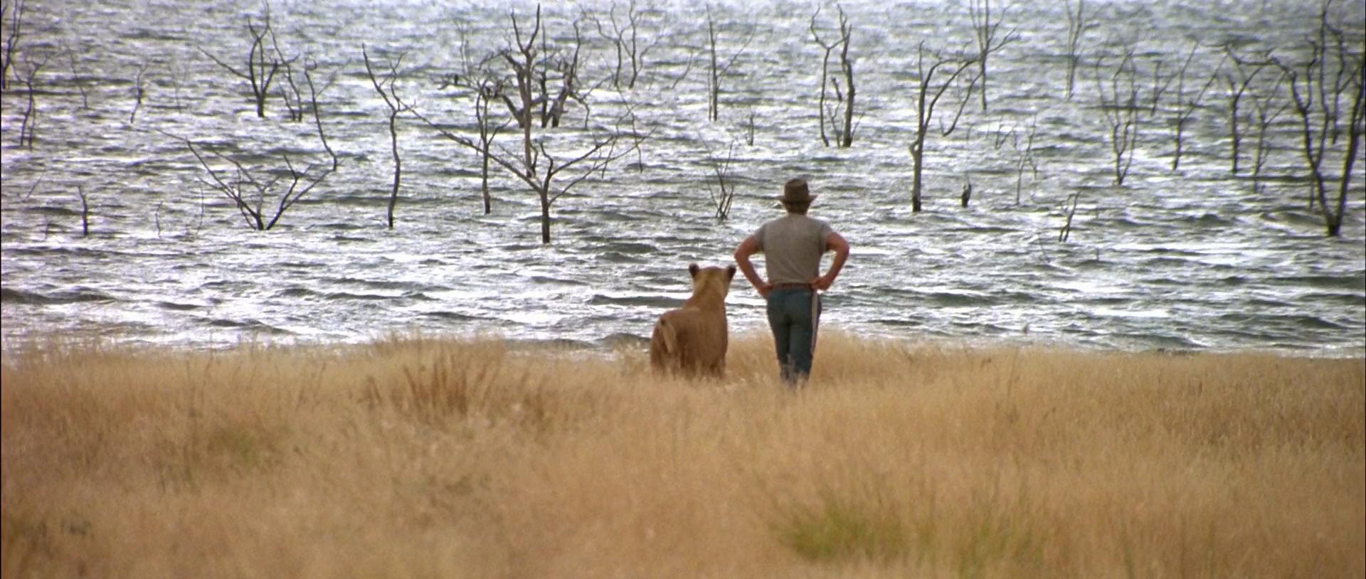 Баловень судьбы / Itineraire d'un enfant gate (1988/BDRip) 1080p