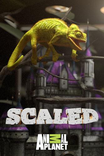 Animal Planet: Дом для рептилий. Принцесса и Питон / Scaled (2018) HDTV [H.264/1080i-LQ]