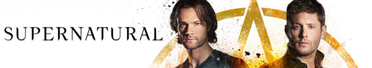 Supernatural S01-S13 BRRip x264-ION10