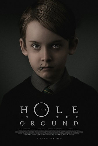 The Hole in the Ground 2019 1080p WEB-DL H264 AC3-EVO