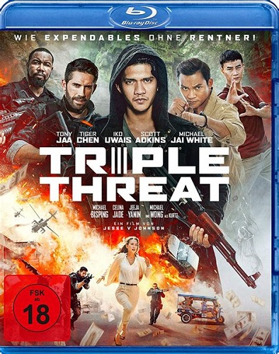 Triple Threat 2019 1080p BluRay x264-ALLiANCE