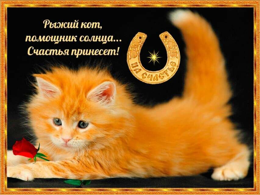 https://i1.imageban.ru/out/2019/07/29/19dcdb70334c6c684277e1aaa66fd7d0.jpg