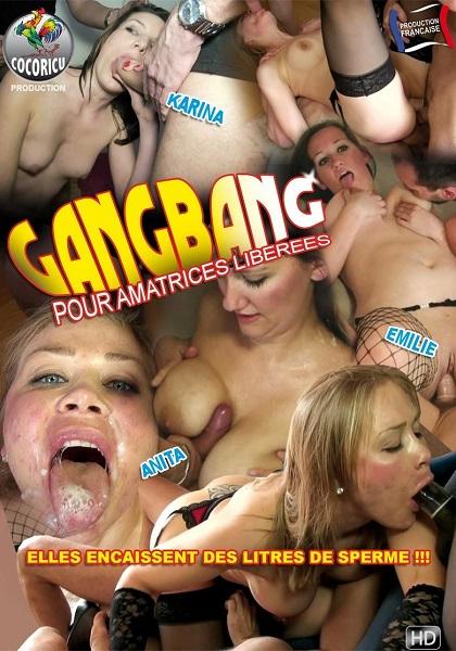 Групповуха для любителей / Gang Bang pour Amatrices liberees (2013) WEB-DL