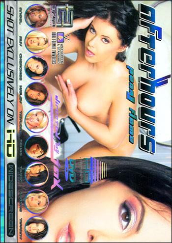 Постер:Внеурочные часы 2: Пенни Флэйм / Afterhours 2: Penny Flame / After Hours 2 (2005) DVDRip