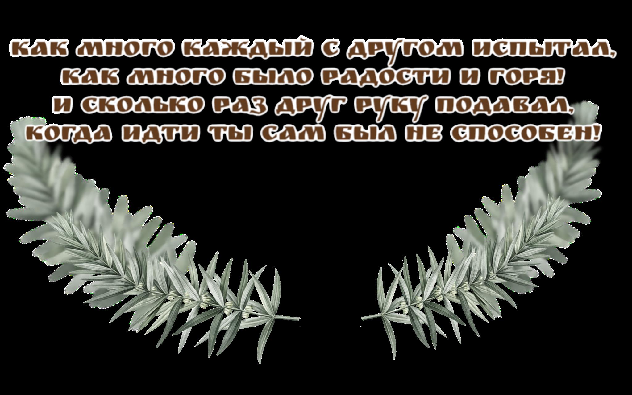 https://i1.imageban.ru/out/2019/12/23/119b8e21adaf99f4ac7e5047e8942780.png