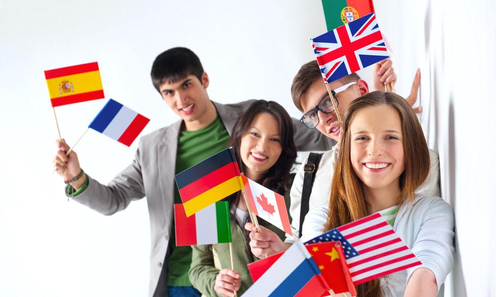 Критерии выбора курсов иностранных языков