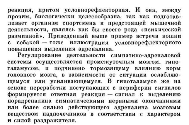 https://i1.imageban.ru/out/2020/06/02/e30c4568809f4bde35e33e6b77294243.jpg