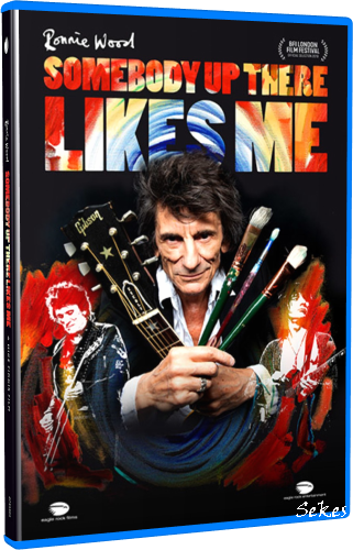 Ronnie Wood - Somebody Up There Likes Me (2020, Blu-ray)