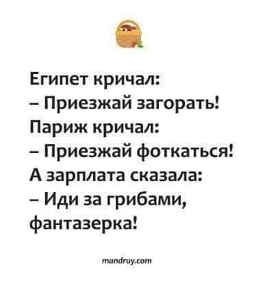 https://i1.imageban.ru/out/2020/10/31/fd3645463f8900bc98683f9c4a6e00ce.jpg