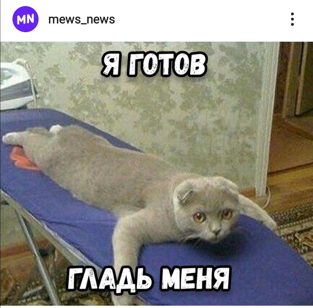 https://i1.imageban.ru/out/2021/01/13/1060507dc24cbd92e033ee7a8af6531f.jpg