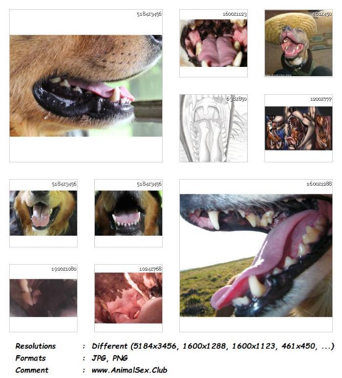 e4d0ac653f22f4696b10f3cb3ed07c06 - Dog Mouths Animalsex - 23 Pics - Animal Sex Genitals Pictures