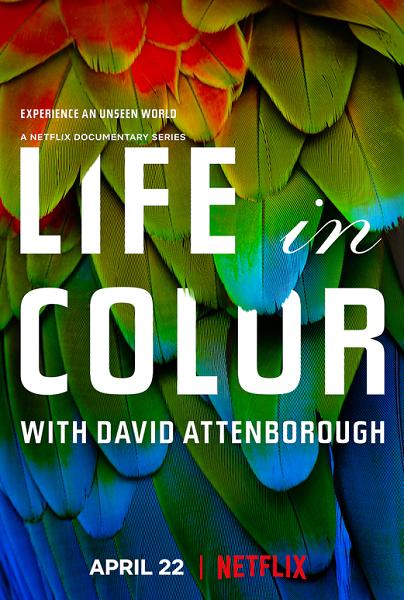 Жизнь в цвете с Дэвидом Аттенборо / Life in Colour [01x01-02 из 03] (2021) WEBRip 1080p | FocusX