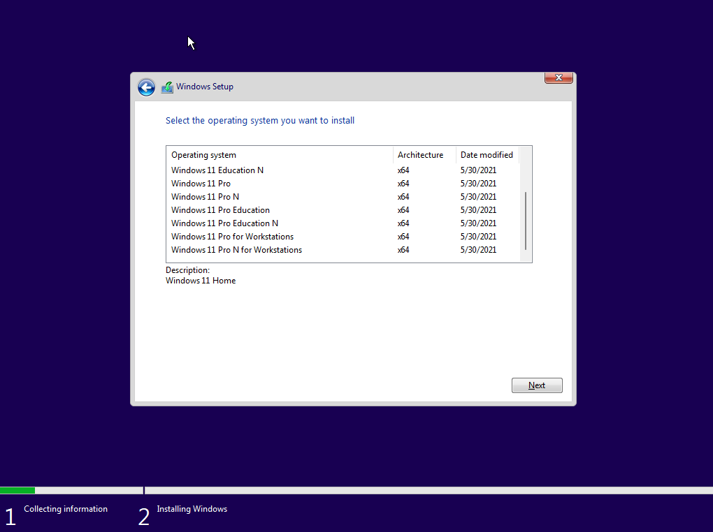 Windows 11 Dev OS x64 Build 21996.1.210529-1541 [En]