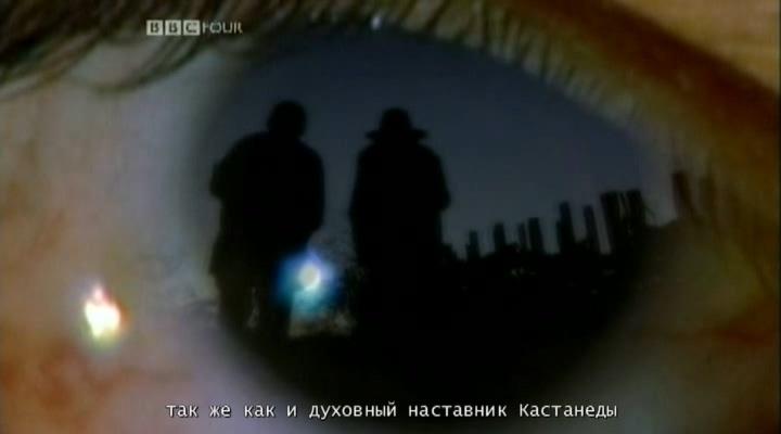 https://i1.imageban.ru/out/2021/07/18/3183b42e41df313ec4cbbecdea0e4912.jpg