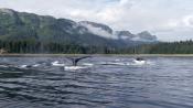 Великие природные явления / The Nature's Most Amazing Events (2009) BDRip 720p
