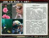http://i1.imageban.ru/thumbs/2013.02.04/3ecd8eea9cf410f3a48789f2da0deeb5.jpg