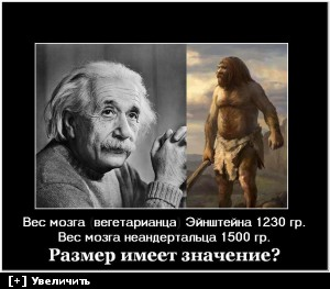 [Изображение: d4200b04ee4a9cbd4036d0642de39e62.jpg]