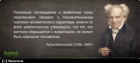 https://i1.imageban.ru/thumbs/2013.10.11/1ac816d9c28cd7d790c27f9b03732ddd.jpg