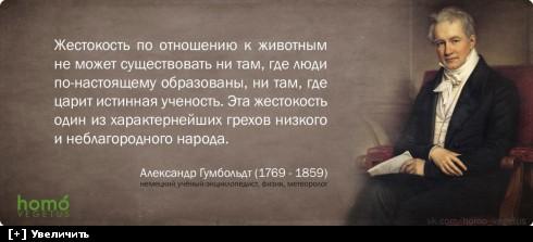 https://i1.imageban.ru/thumbs/2013.10.11/491de534d65ff953a0cd7aac8cdfc382.jpg