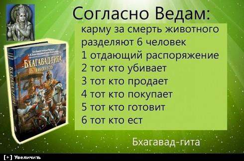 http://i1.imageban.ru/thumbs/2013.10.14/04ccdc20341be5bc37119332b324c1ff.jpg