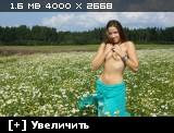 http://i1.imageban.ru/thumbs/2013.10.25/a1302007743ddff44c1ce389ea36fd4f.jpg