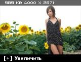 http://i1.imageban.ru/thumbs/2013.10.25/ae4a3606f521bc1fc6969e889b35238b.jpg