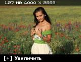 http://i1.imageban.ru/thumbs/2013.10.25/bd9056daf05efa465e23102fb988bea9.jpg